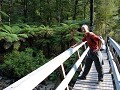 Crossing bridges, Torrent Valley, Abel Tasman NP