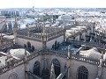 Cathedral roof, taken from La Giralda