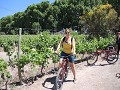 Wine & Bike tour
