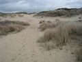 in natuurreservaat De Panne