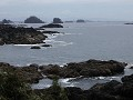 Ucluelet - Wild Pacific Trail