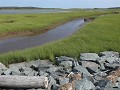 Cole Harbour, Salt Marsh Trail, fietstocht