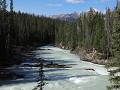 Yoho NP - Kicking Horse rivier aan Natural Bridge
