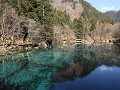 Jiuzhaigou NP, Five-flower lake en omgeving