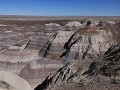 Petrified Forest NP - Historic Blue Forest Trail w
