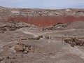 Petrified Forest NP - Onyx Bridge wandeling