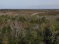 Everglades NP, Shark Valley, Tram Trail traject in