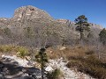Guadalupe Mountains NP, McKittrick Canyon Trail