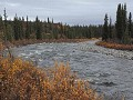 Denali Highway, Brushkana Creek