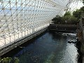 Oracle, Biosphere 2, de zee