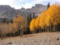 Great Basin NP, herfstkleuren langs Alpine Lakes L