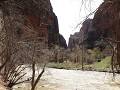 Zion NP, Zion Canyon - Temple of Sinawava, riversi