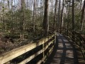 Congaree NP - Boardwalk Loop Trail en Weston Loop
