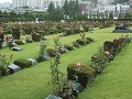 Busan, United Nations Memorial Cemetery and Peace