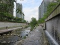Seoul, Cheonggyecheon stream, relax wandelen langs