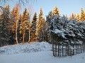 zweden-winter-0801253097