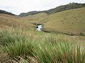 Horton Plains NP - Wandeling naar World's End
