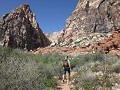 Red Rock Canyon: wandeling naar Pine Creek Canyon