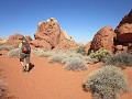 Valley of Fire State Park: wandeling aan Rainbow V