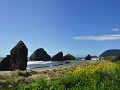 USA - 05102014 - Oregon - Coast - DSC 0728